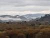 Fog at Carmel River SB