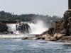 Willamette Falls